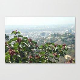 Hollywood Dreams Canvas Print