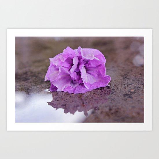 Flower reflection Art Print