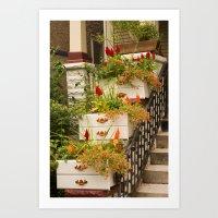 Drawer Planters Art Print