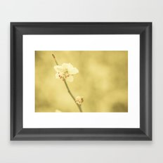 Solace Framed Art Print