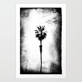 Tropical Darkroom #167 Art Print