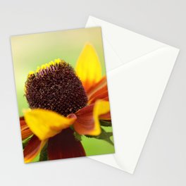 AFE Rudbeckia Stationery Cards