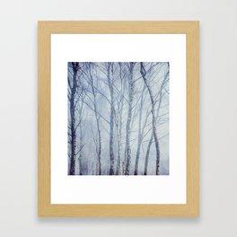 Mist In The Trees Framed Art Print