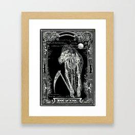 DEATH of Tarot Cat Framed Art Print