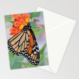 The Monarch Has An Angle Stationery Cards