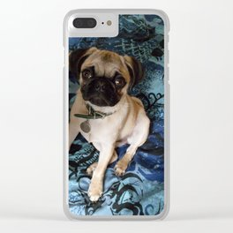 Baby pug in blue Clear iPhone Case