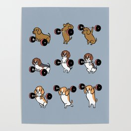 Olympic Lifting Beagles Poster