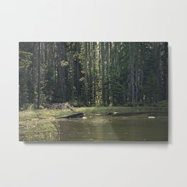 Mountain Pond Metal Print