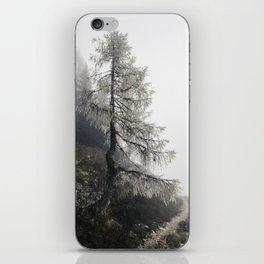 Mystic Forest in Slovenia 02 iPhone Skin