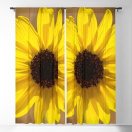 Sunflower In The Countryside Blackout Curtain