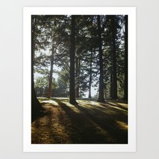 MT. Tabor Art Print