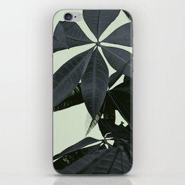 Pachira Aquatica #3 #foliage #decor #art #society6 iPhone Skin