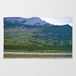 Bull Elk with his Lady Friends on the Athabasca River in Jasper National Park, Canada Rug