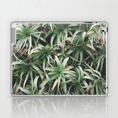 Aloe, mate. Laptop & iPad Skin