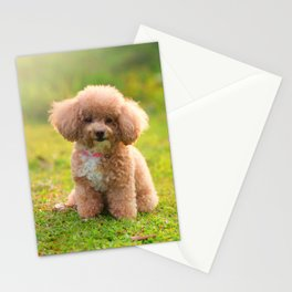 Micky The Furry Stationery Cards