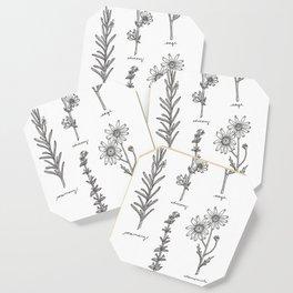 Kitchen Herbs Coaster