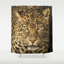 Dangerous leopard Shower Curtain