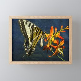 Swallowtail on the Crocosmia with Texture Framed Mini Art Print
