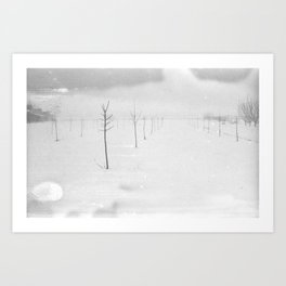 Snow Etching Print  Art Print