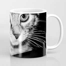 Time is what turns kittens into cats Coffee Mug