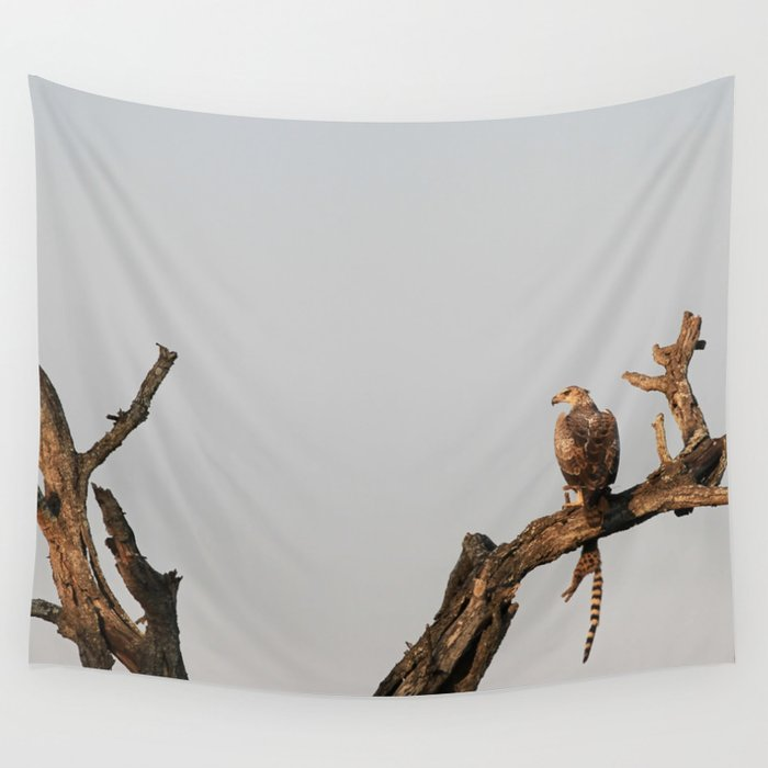 Hawk Eagle with its Catch Wall Tapestry