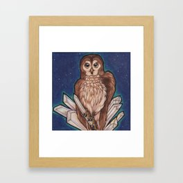 Owl & Crystals Framed Art Print