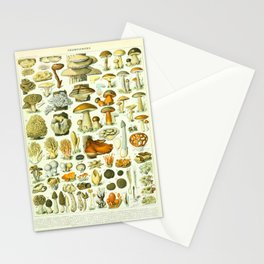 Mushroom Vintage Scientific French Language Encyclopedia Lithograph Mushrooms Labeled Diagrams Stationery Cards