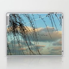 Through Willows Laptop & iPad Skin