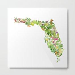 Fruits of Florida Metal Print