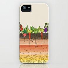 Earth soil layers vegetables garden cute educational illustration kitchen decor print Slim Case iPhone (5, 5s)