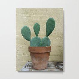 Paddle Cactus Metal Print