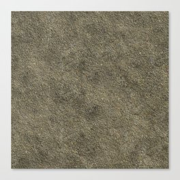 Concrete Canvas Print