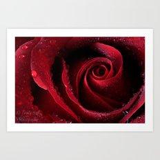 My Birthday Rose Art Print