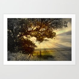 Across Blagdon Fields. Art Print