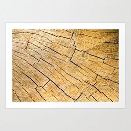 Cut Wood Trunk and Grain pattern Art Print