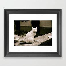 Concrete Cat Framed Art Print