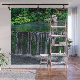 River waterfall nature landscape Wall Mural