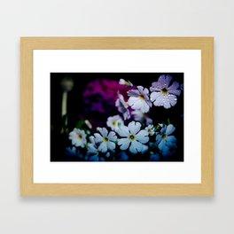Rainy White Flowers Framed Art Print