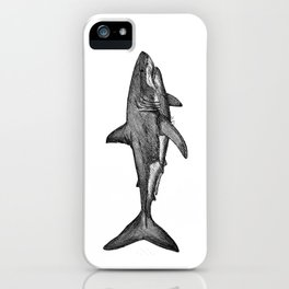 Carcharodon carcharias iPhone Case