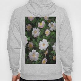 Roses Hips Hoody