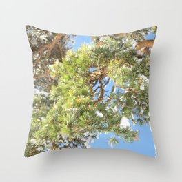 Schluchsee winter pine Throw Pillow