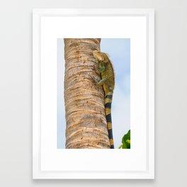 Iguana Palm Framed Art Print