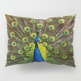 Colorful peacock Pillow Sham