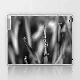 Morning dew Black&white 8548  Laptop & iPad Skin