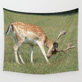 deer, roe deer, Wall Tapestry