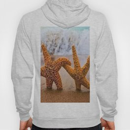 Two Starfish By The Seaside Beach  Hoody
