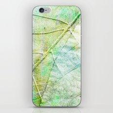 Green Painted Leaf iPhone & iPod Skin
