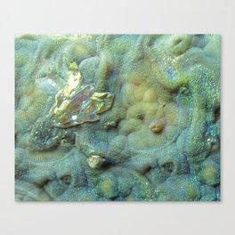 Chalcedony landscape Canvas Print