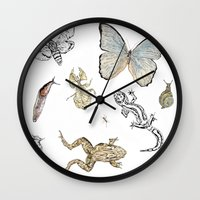 insects Wall Clocks featuring Insects by Claire Bond