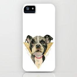 Puppy Eyes 3 iPhone Case